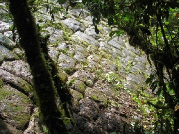 Da li su naučnici otkrili izgubljeni grad divova u Ekvadoru