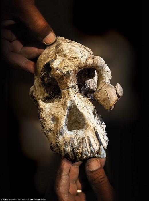 Etiopska kultura datiranja